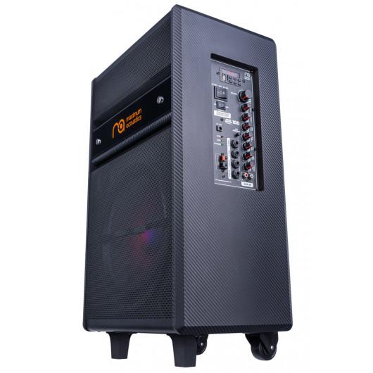 Acoustic system Maximum Acoustics MusicBAND.100
